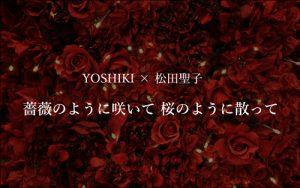 薔薇のように咲いて 桜のように散って